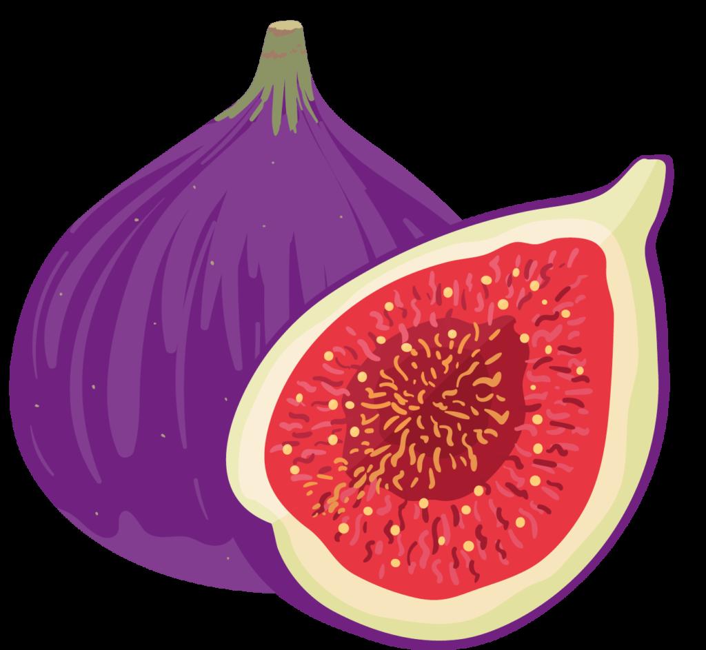 Figs Lab Image